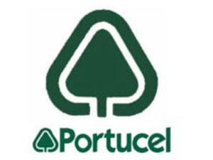 DNU_portucel_27102014