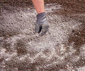 Soil Liming