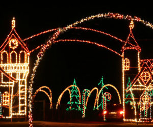Hollywild Holiday Lights
