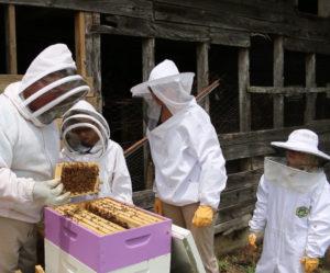 South Carolina 4-H'ers New Honey Bee Project
