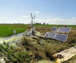 Monitoring equipment in the rice fields measure gases
